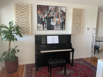 BA120 Acoustic panel Piano room